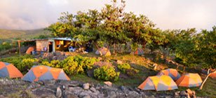 Galapagos Reforestation project camp site