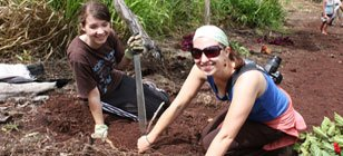 Galapagos Reforestation project volunteers